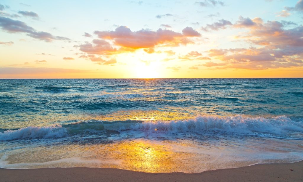 ocean as symbol of unity